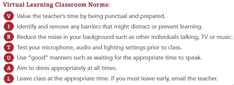 Virtual Learning Classroom Norms Image
